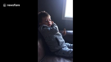 Two-year-old devastated after his dog ate his granola bar