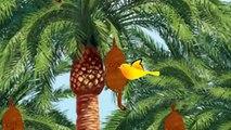 Two Little Dicky Birds   Nursery Rhymes Collection   Preschool Cartoon Kids Songs   Baby B