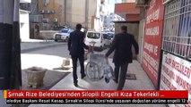 Şırnak Rize Belediyesi'nden Silopili Engelli Kıza Tekerlekli Sandalye