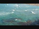 Images - Belles plages de vacances – Envie de Visiter -  Le meilleur des vacances ?