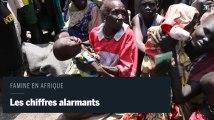 Les chiffres alarmants de la famine en Afrique