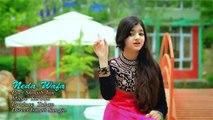Pashto New HD Song 2017 Za Yam Wafa By Neda Wafa