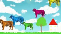 Семья Палец Песни Животных Тигр Мультфильм Детские Finger Семья Рифмуется Для Детей Животных