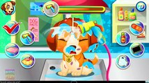 Animal Doctor Care. Pets Need Your Help: Puppy, Kitten And Baby Monkey. Game App For Kids.
