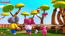 El señor Divertido Elefante   Elefante   Animal Canciones   Pinkfong Canciones para Niños