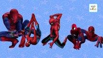 Finger Family Spiderman cartoon Family Songs   Spiderman Daddy Finger   Nursery Rhymes for Children