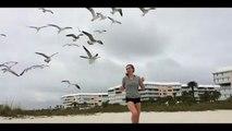 Attaque de mouettes sur la plage... Pauvre fille