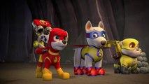 Paw Patrol - Pups Save Apollo - Full Episodes HD