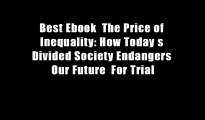 Best Ebook  The Price of Inequality: How Today s Divided Society Endangers Our Future  For Trial