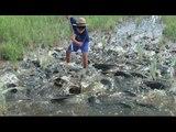 Amazing Fishing Video - Extreme Fishing - Most Popular Fishing & Hunting Video Clips