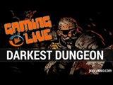 Darkest Dungeon : Gameplay - Aux confins de la folie - Gaming Live