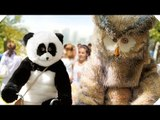 HIBOU : le second film de RAMZY Bedia ! (Comédie - 2016)