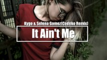 Kygo  Selena Gomez - It Aint Me (Codeko Remix)