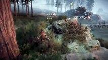 PS4live (Horizon Zero Dawn) (26)