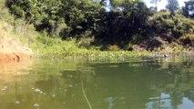 Represa de Natividade da Serra, Apneia, mergulho e navegação, represa, água doce, observação da Natureza das águas interiores, (46)