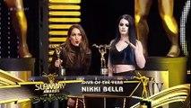 Nikki Bella Tribute Lighters