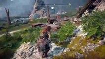 PS4live (Horizon Zero Dawn) (28)