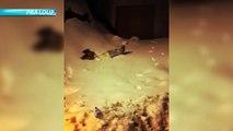 Alpes du Sud : tour d'horizon des chutes de neige dans les stations
