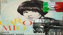 CARO MIO (CARA MIA)/NON TORNAR MAI - Iva Zanicchi 1965 (Facciate:2)