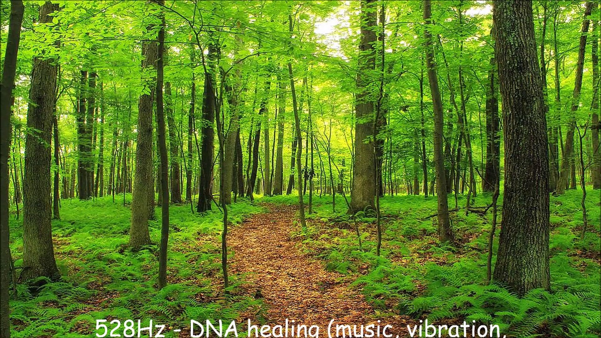 528Hz - DNA healing (music, vibration, noise, sound, frequency)