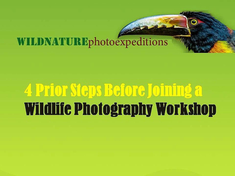 wildlife photography course- wildlife photography workshops