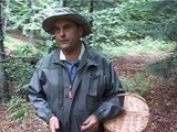 Les champignons dans la Loire 2 - Magazines / Docus - TL7, Télévision loire 7