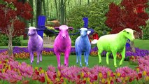 Learning Farm Animals For Children | Learn Domestic Animals For Toddlers | 3D Animation
