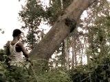 Deforestation & Palm Oil
