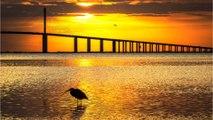 8 Unique Florida Vacation Spots