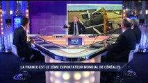 """""""Les défis de la filière céréalière française"""" sur BFM Business"""