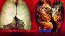 Akciğer temizleme kürü - ibrahim saraçoğlu - Mucize iksirler