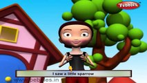 Pavo real de Aves Rima de cuarto de niños de Aves | Rimas | canciones infantiles Para Niños | canciones infantiles 3D Ani