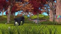 King kong vs Dinosaurs Fight Short Movie | King Kong & Dinosaurs Cartoons For Children