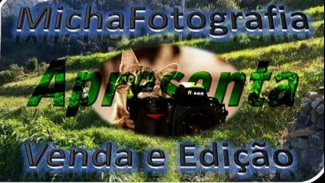 Galeria de Fotos da Ilha da Madeira 59