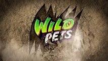 Spider Habitat Playset / Interactivo Araña Striper y el Terrario de los Animales Salvajes Cobi 29002