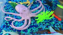 ANIMAL PLANET MEGA OCEAN TUB SHARKS DOLPHINS TURTLES SEAHORSE STARFISH OCTOPUS WHALE CRAB - UNBOXING-xw7X-