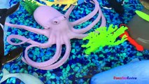ANIMAL PLANET MEGA OCEAN TUB SHARKS DOLPHINS TURTLES SEAHORSE STARFISH OCTOPUS WHALE CRAB - UNBOXING-xw