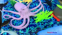 ANIMAL PLANET MEGA OCEAN TUB SHARKS DOLPHINS TURTLES SEAHORSE STARFISH OCTOPUS WHALE CRAB - UNBOXING-xw7X-zcY