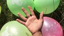 5 arco iris húmedo Globos de Colores SpiderGirl Aprender los Colores del Globo Dedo de la Familia de la Guardería Com