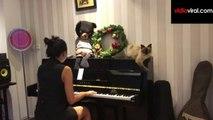 Auuw! Aura Kasih Geli Di Ganggu Kucing