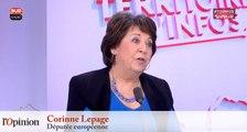 Corinne Lepage : «J'espère que Macron sera un très grand président comme Kennedy»
