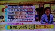 2017.03.08 NHK ほっと ニュース 北海道 【 北海道/日本からの自由と真実の声】