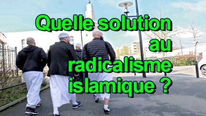 Quelle solution au radicalisme islamique