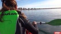 Une baleine déplace leur kayak