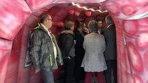 Alpes-de-Haute-Provence : visite du côlon à l'hôpital de Digne pour la journée du dépistage du cancer colorectal