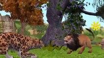 Lion Attacks Video Collection | Lion Attacks Crocodile | Wild Animal Attacks