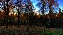 Zülfü Livaneli - Karlı Kayın Ormanı (Duygusal Şarkılar HD) Mu©o