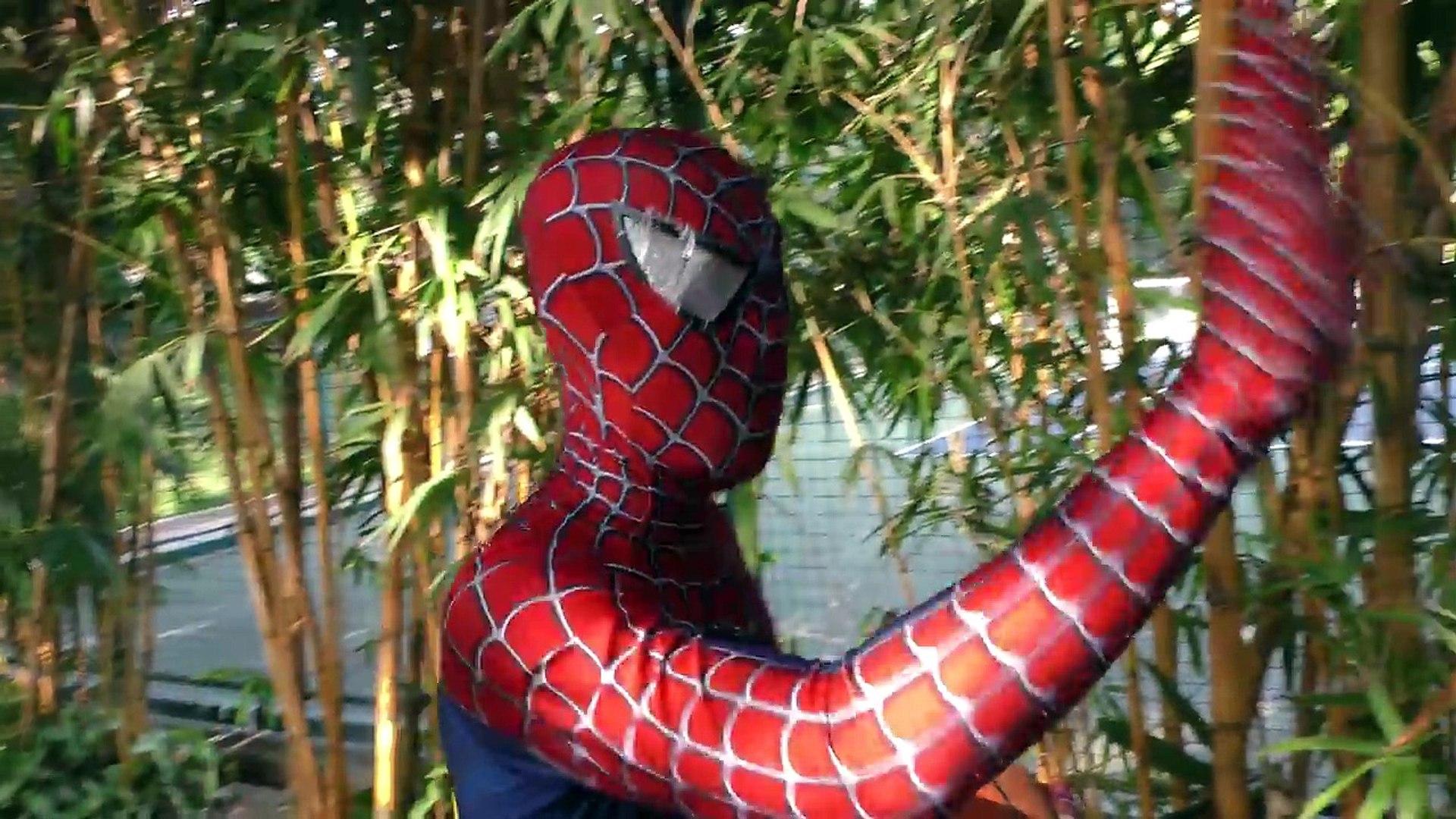 Spiderman Turn Were Wolf! Superheroes Monster Joker Venom Hulk Muscle Action Movies Wolf S