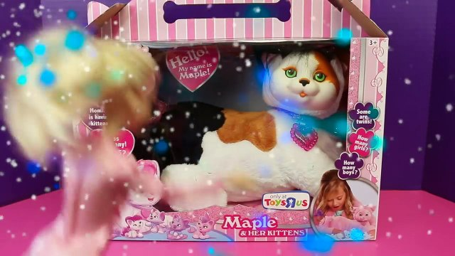 Barbie Magician Makes Puppy Surprise DisneyCarToys Stuffed Dog and Kitty Surprise Toys Mag