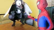 Superhero Compilation! Ariel meets Darth Vader vs Spiderman & Pink Spidergirl w/ Giant Gam